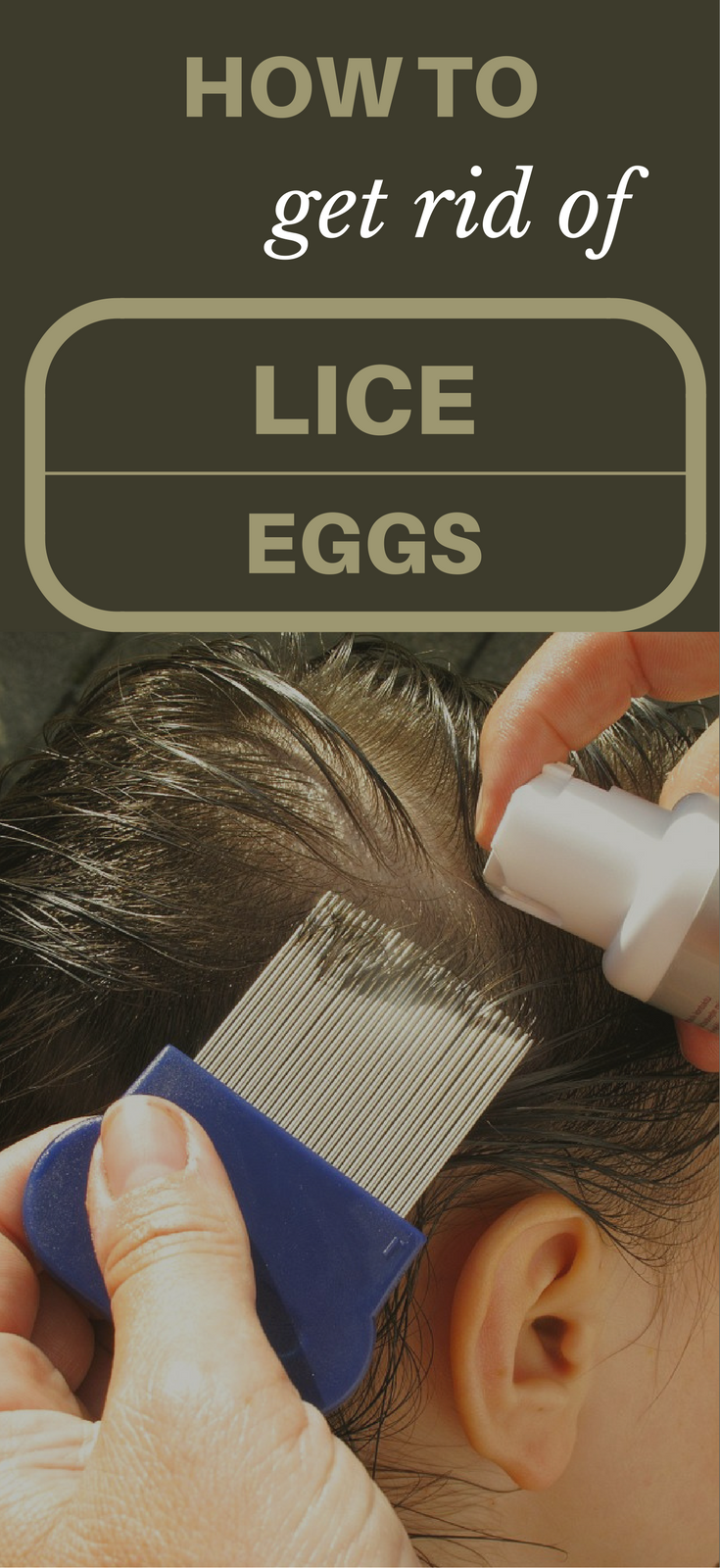How To Get Rid Of Lice Eggs TopCleaningTipscom
